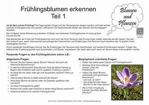 Was Sind Frühlingsblumen : bildkarten fr hlingsblumen teil 1 zur besch ftigung f r senioren mit demenz ~ Whattoseeinmadrid.com Haus und Dekorationen