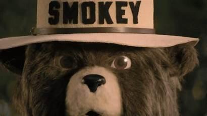 Smokey Giphy Gifs Tweet