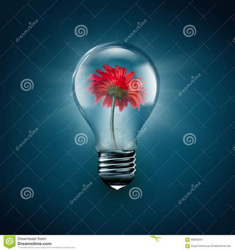flower inside light bulb stock illustration image