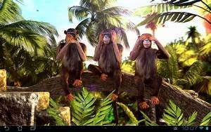 Three Wise Monkeys 3D Android Apps On Google Play