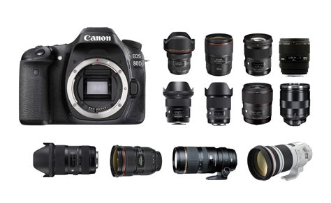 Best Lenses For Canon Eos 80d  Camera News At Cameraegg