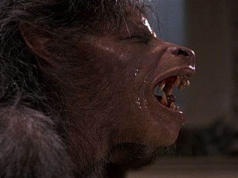 Day American Werewolf London Staring