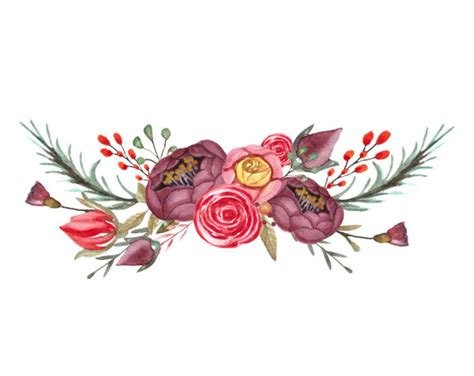 flowers png stock  royalty  flowers png images