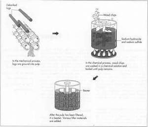 properties of hemp seed