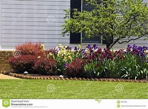 Residential flower garden royalty free stock image image for Residential flower gardens