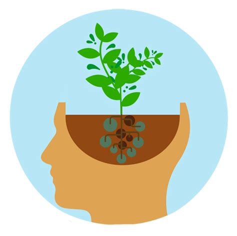 How to Develop a Growth Mindset In Schools - Tofaş Akademi