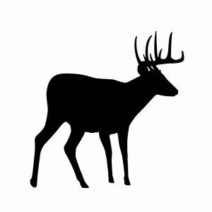 Silhouette Buck - ClipArt Best