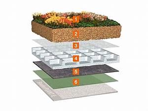 Extensive Dachbegrünung Aufbau : aufbau einer dachbegr nung energie fachberater ~ Whattoseeinmadrid.com Haus und Dekorationen
