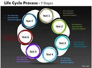 Life Cycle Process 7 Stages Powerpoint Templates Graphics