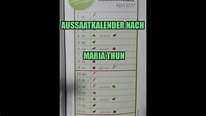 Aussaatkalender 2017 Pdf : aussaatkalender nach maria thun mondkalender youtube ~ Whattoseeinmadrid.com Haus und Dekorationen
