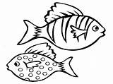 Fish Pages Activity Bestcoloringpagesforkids Via sketch template