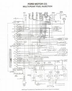 Lovely Alternator Wiring Diagram Ford Ranger  Diagrams
