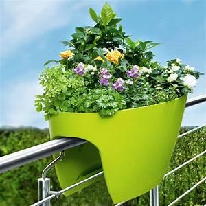 Pro Idee Garten : flower clip pflanztopf 3 jahre garantie pro idee ~ Pilothousefishingboats.com Haus und Dekorationen