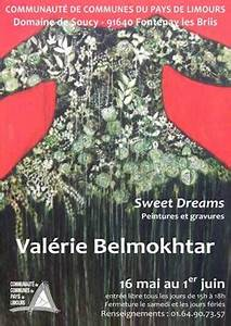 Valerie belmokhtar devoile ses oeuvres lignes et formations for Actualites valerie belmokhtar exposition sweet dreams