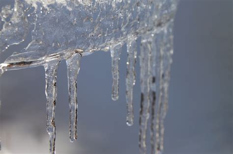 images gratuites eau branche neige hiver gel la