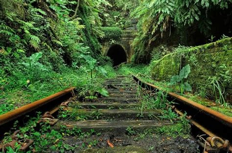 Abandoned Tracks Running Toward A Tunnel In The Jungle