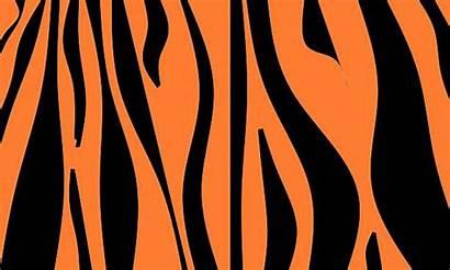 Tiger Clip Illustrations Animal Vector Graphics