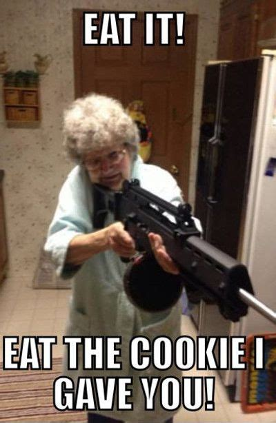 Cookie Memes - eat it eat the cookie gave you funny cookie meme picture