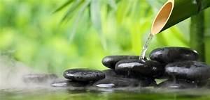 Bilder Feng Shui Steine : feng shui farben schwarze steine bmbus gr ne pflanzen wasser zen einrichtungsideen ~ Whattoseeinmadrid.com Haus und Dekorationen