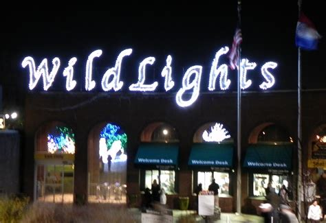 saint louis zoo christmas lights wild lights at the st louis zoo stl homelife