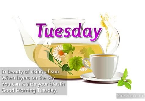 tuesday morning salt l photo collection good morning tuesday greetings