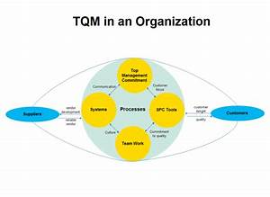 Organization Tqm Diagram Examples And Templates
