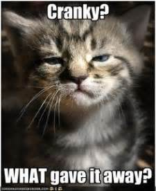 Cranky Meme - 1000 images about its a part of life on pinterest cranky pants spiritual encouragement and