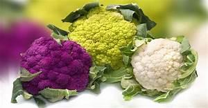 Culture du chou fleur blanc et parfois violet dossier for Les couleurs qui se marient 15 choux brassica oleracea