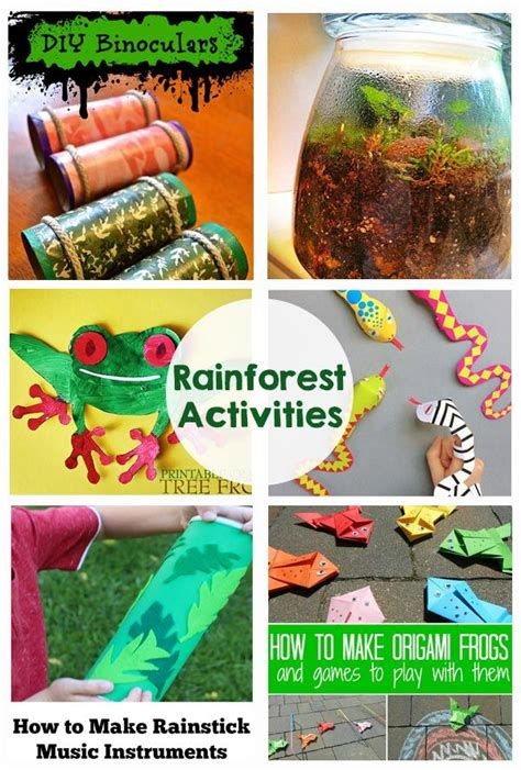 rainforest activities and printables all time favorite 595 | 950f51ef9e15f05779e041f2c300c897