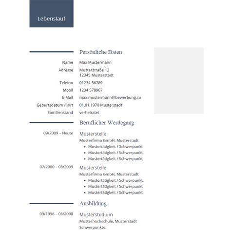 Lebenslauf Professionell Vorlage by Modern Professional Cv Template Modernes
