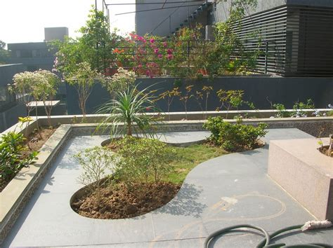 terrace garden design pictures bonsai trees and plants in ahmedabad for sale garden design services