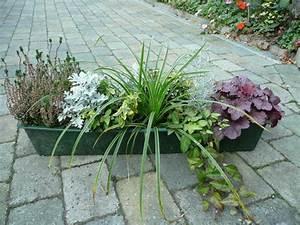 Balkonkästen Winterhart Bepflanzen : pflanzen in nanopics balkonk sten balkon bepflanzen ~ Lizthompson.info Haus und Dekorationen