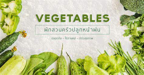 การปลูกผักในหน้าฝน ดูแลอย่างไร   พืชผัดสวนครัว   cupshape.com