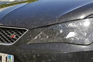 Enlever Résine Sur Carrosserie : dossier bien nettoyer sa voiture ~ Dallasstarsshop.com Idées de Décoration