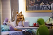 """The Muppets - """"Generally Inhospitable"""" - The Muppets Photo ..."""