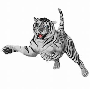 Image - White-Tiger.png | TW2: Dragonspawn Wiki | FANDOM ...