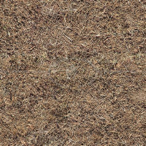 Dry grass texture seamless 12919