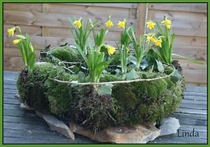 Amaryllis In Der Vase : moskrans met bloembolletjes voor op de tuintafel maken met ~ Lizthompson.info Haus und Dekorationen