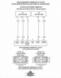 2005 Dodge Ram 48re Transmission Wiring Diagram Wiring Diagrams Data Support Support Ungiaggioloincucina It