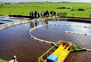 Lovely Pond Treatment  1 Oxidation Ponds Wastewater Treatment