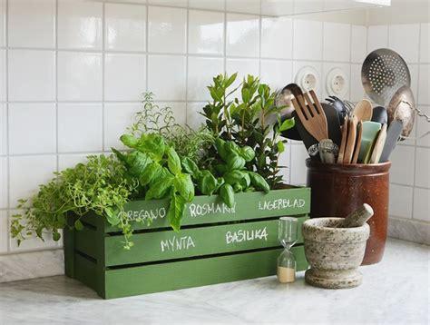 plante pour cuisine vous avez déjà choisi une jardinière pour votre maison
