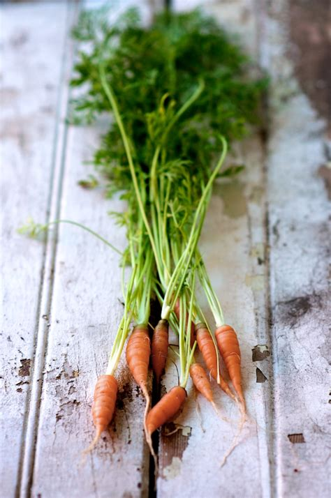 salad  edible radish beet carrot top greens