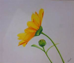 Simple Colour Pencil Drawing - Drawing Of Sketch