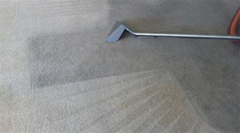 Commercial Deep Steam Carpet Cleaning 409 Multi Surface On Carpet Small Square Rugs Non Slip Red Runner Toxic Voc Premium Anso Nylon From Shaw I Need New In My House Rubber Pad Vs Rebond Cleaning Enamel Paint