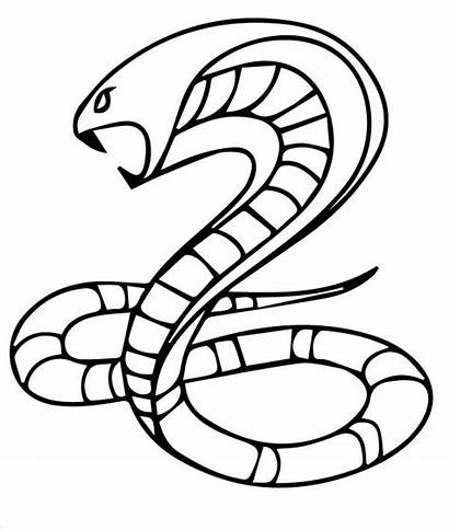 Snake Coloring Cobra Pages King Templates Snakes