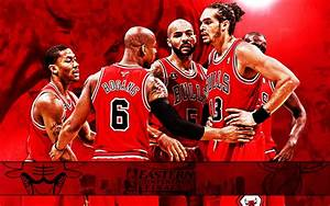 chicago bulls 2011 nba conference finals photo
