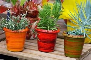 Poterie D Albi : poterie d 39 albi un nouveau logo pour une saison coloree jaf info jardinerie animalerie ~ Melissatoandfro.com Idées de Décoration