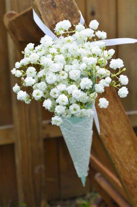 babys breath cone  munster rose blooms bouquets