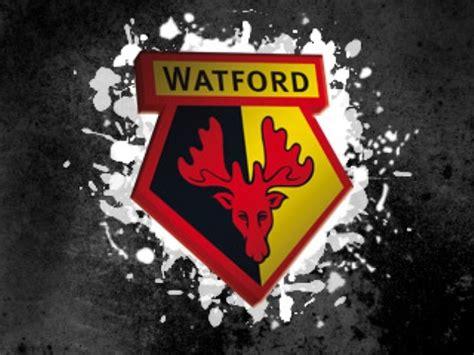 Watford's Hornets