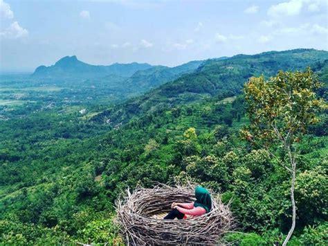 lokasi  rute bukit jomblo tulungagung  spot